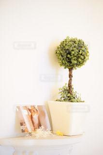 テーブルの上の花の花瓶の写真・画像素材[1446856]