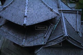 青と白の傘の写真・画像素材[1665886]