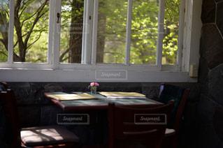 カフェ,花,静か,窓辺,レストラン