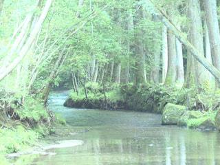 水,川,渓谷,外出,おでかけ,お出かけ