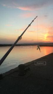 朝日,釣り,休日,趣味