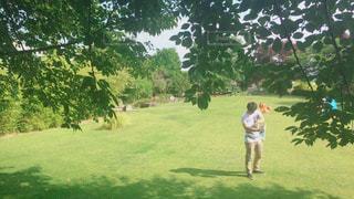 自然,公園,休日,デート,環境