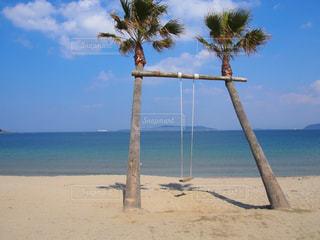 ヤシの木と水の体を持つビーチの写真・画像素材[1108833]