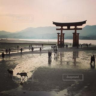 海,鳥居,旅行,休日,宮島,厳島神社