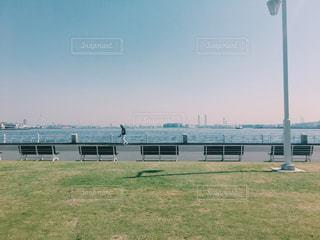 大規模なグリーン フィールドの写真・画像素材[1233574]