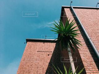 赤レンガ造りの建物と青空を下から見上げた風景の写真・画像素材[1362724]