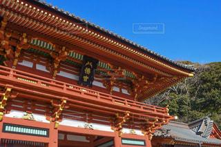 鎌倉,一眼レフ,鶴岡八幡宮