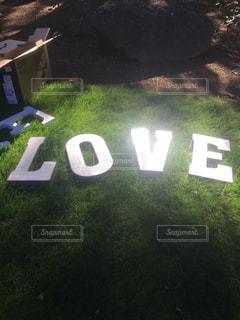 LOVEの写真・画像素材[1021658]