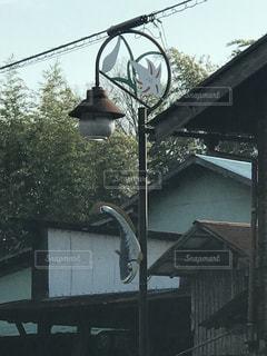 ナマズの街灯の写真・画像素材[1022743]