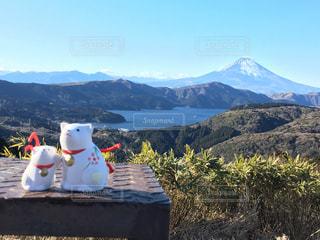 富士山と今年の干支(犬)。。。祈る🙏の写真・画像素材[990021]
