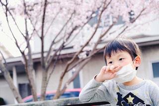 花粉症2の写真・画像素材[1103814]