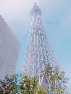 東京の下町スカイツリーの写真・画像素材[1124390]