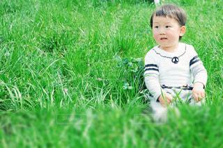 草原の中の男の子の写真・画像素材[1182474]