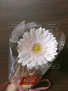 Flowerの写真・画像素材[1413149]