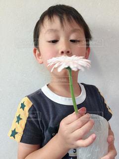男の子と一輪の花の写真・画像素材[1413154]