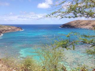 ハワイ ハナウマ湾の写真・画像素材[1315429]