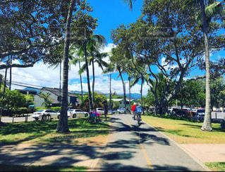 夏,晴れ,青空,アメリカ,観光,旅,America,ハワイ,Hawaii,ドライブ