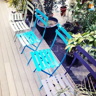 ガーデニングショップのカラフルな椅子の写真・画像素材[1262962]