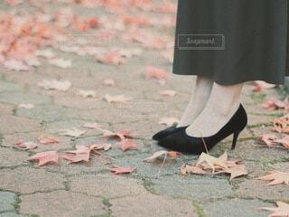 足元の秋の写真・画像素材[3835744]