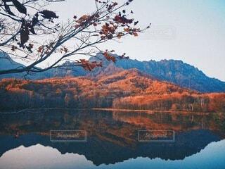 秋に包まれての写真・画像素材[3836802]