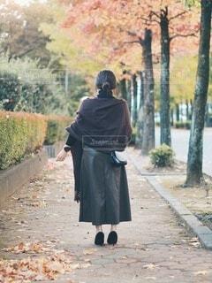 秋を拾っての写真・画像素材[3898074]