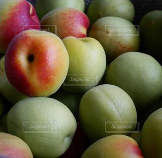 梅の実の写真・画像素材[1051241]