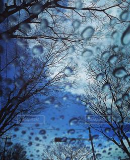 みぞれの空の写真・画像素材[1079416]