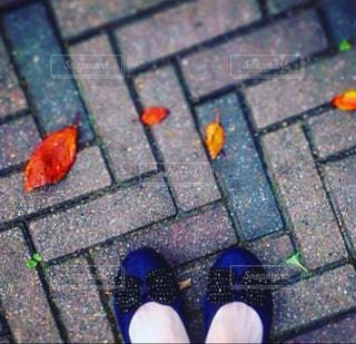 私の足もとの写真・画像素材[1081362]