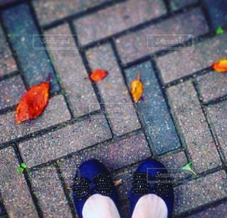 ピーズの青い靴の写真・画像素材[1822991]