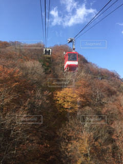 秋,紅葉,登山,ロープウェイ