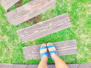 夏の散歩の写真・画像素材[1800746]