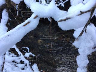 雪,白,川,水面,ホワイト