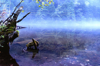 自然,アウトドア,神秘的,日本,休日,長野,上高地,明神池,眺める