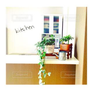 近くの花のアップ - No.1010627