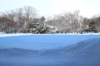 雪景色の写真・画像素材[1738749]