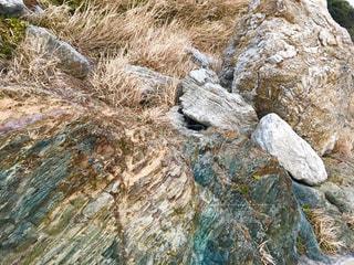伊良湖岬の岩 - No.1006978
