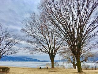 自然,風景,空,冬,屋外,日本,長野,長野県,信州,諏訪湖,諏訪,諏訪市,諏訪湖の御神渡り,御神渡り