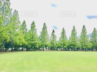 西藤公園の写真・画像素材[1025830]