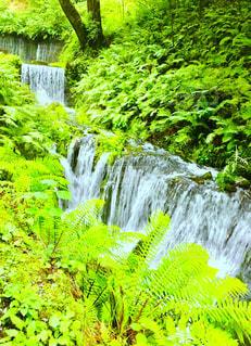 白糸の滝 - No.1026663