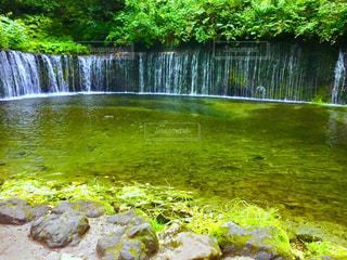 白糸の滝 - No.1026670