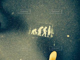 あしもとの写真・画像素材[1054557]
