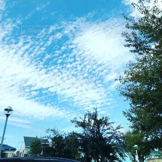 空,うろこ雲,秋空