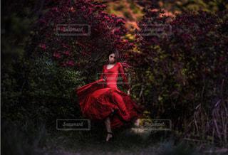 森の前に立っている女性の写真・画像素材[2169887]
