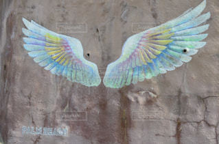天使の羽の写真・画像素材[1020195]