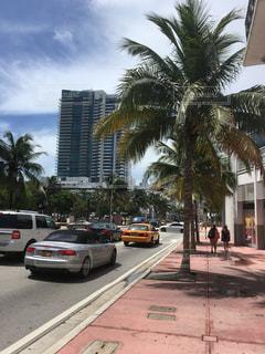 アメリカ,USA,Miami