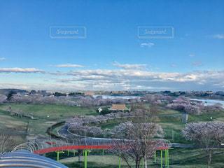 自然,風景,空,花,桜,雲,青空,景色,お花見,宮城県,長沼,長沼フートピア公園