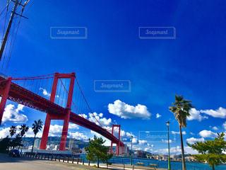 若戸大橋の写真・画像素材[1395156]