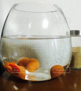 テーブル金魚の写真・画像素材[1004125]