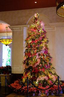海外,カラフル,アート,リボン,キラキラ,旅行,クリスマス,ポインセチア,可愛い,ピンクリボン,オーナメント,ribbon,ピンクのツリー