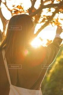 自然の写真・画像素材[2666922]